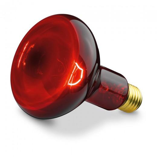 Beurer infrardeča žarnica 100 W